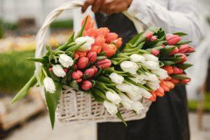 Tulpen im Korb
